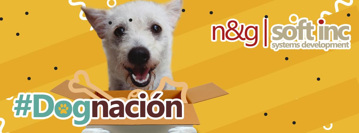 N&G Soft Inc y su #Dognacion para perritos rescatados y en adopción